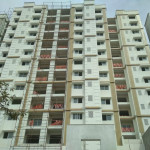 South Elevation Aluminum Cladding & Painting works-Wood stone & Singh Trading 01