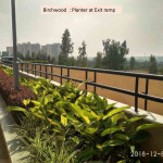 Birchwood : Planter at Exit ramp
